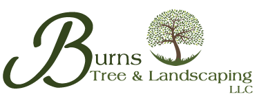 Burns Tree and Landscaping Services Wisconsin