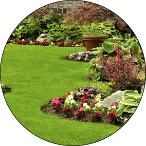 Milwaukee Landscaping Services